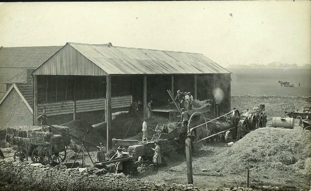 xfs_620x465_s80_Harvest-WW1